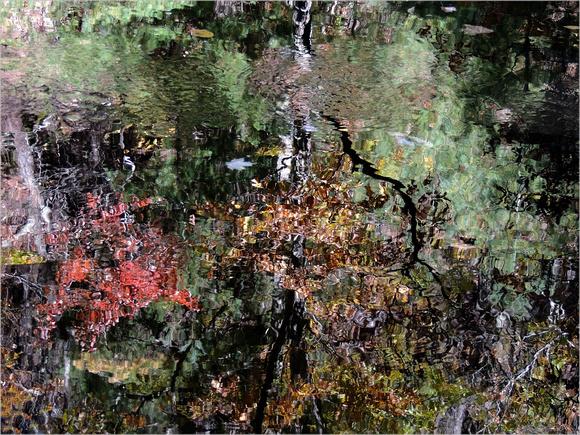 """""""Absinthe Autumn"""""""
